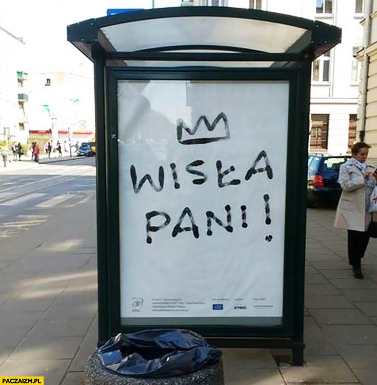Wisła Pani reklama billboard feministki w Krakowie