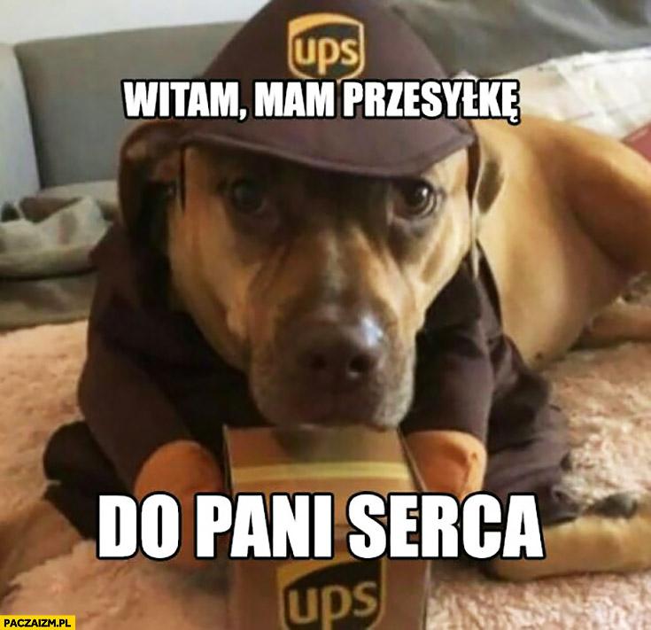 Witam mam przesyłkę do pani serca. Słodki pies kurier UPS
