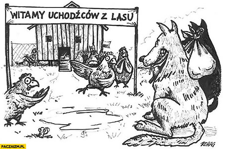 Witamy uchodźców z lasu kury witają zapraszają wilka do kurnika