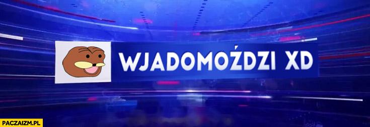 Wjadomoździ XD wiadomości TVP gondola przeróbka logo