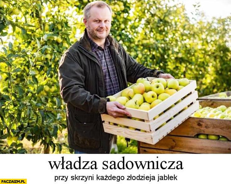 Władza sadownicza przy skrzyni każdego złodzieja jabłek