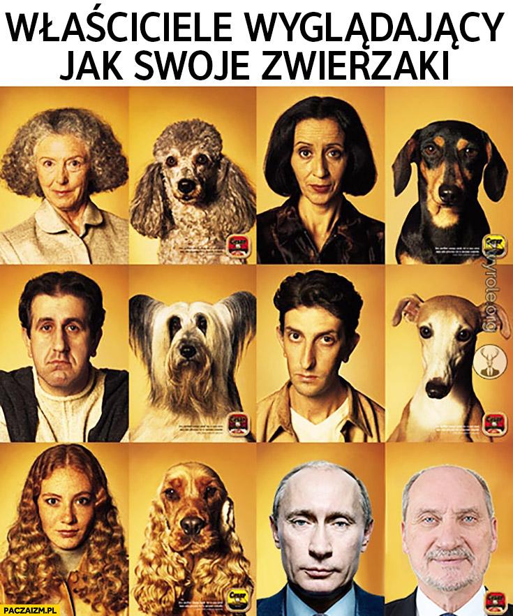 Właściciele wyglądający jak swoje zwierzaki Putin Macierewicz