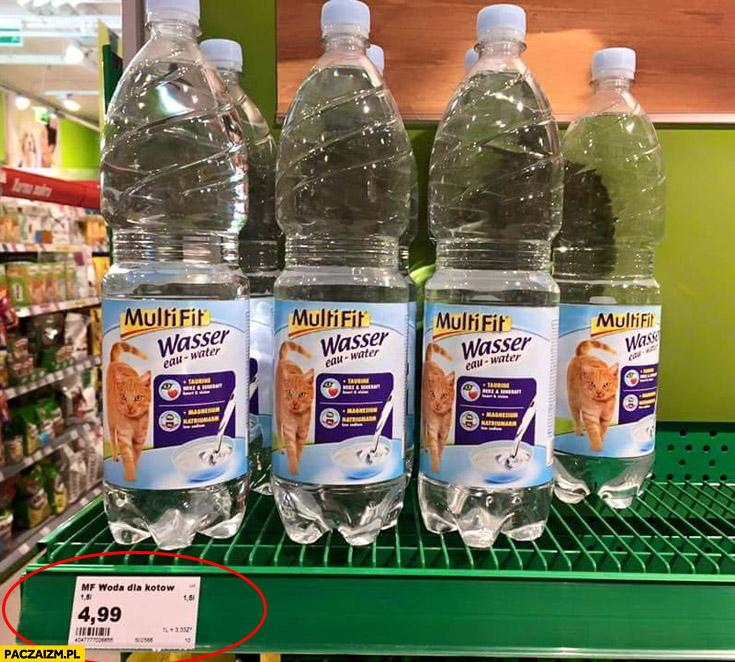 Woda dla kotów