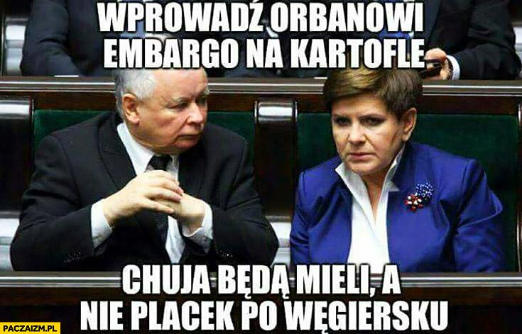 Wprowadź Orbanowi embargo na kartofle, kija będą mieli a nie placek po węgiersku Kaczyński Szydło PiS