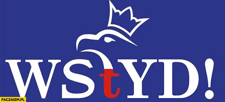 Wstyd logo PiS przerobione na napis Prawo i Sprawiedliwość