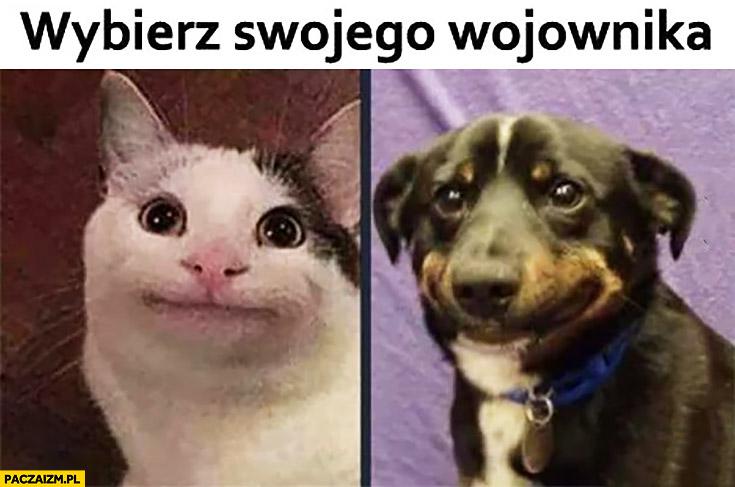 Wybierz swojego wojownika kot pies z dziwna mina