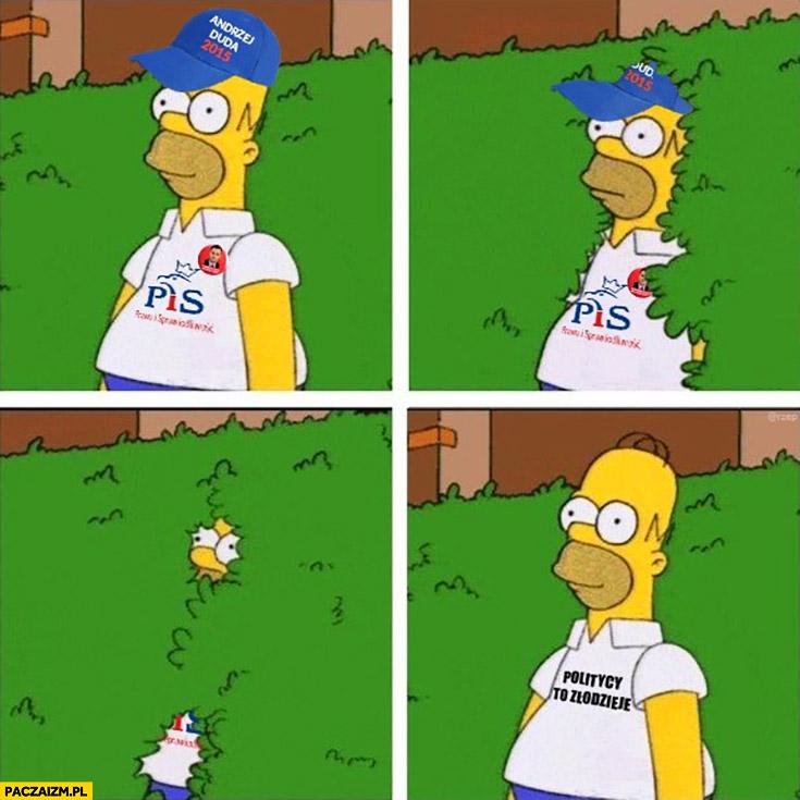 Wyborca PiSu Homer Simpson chowa się politycy to złodzieje
