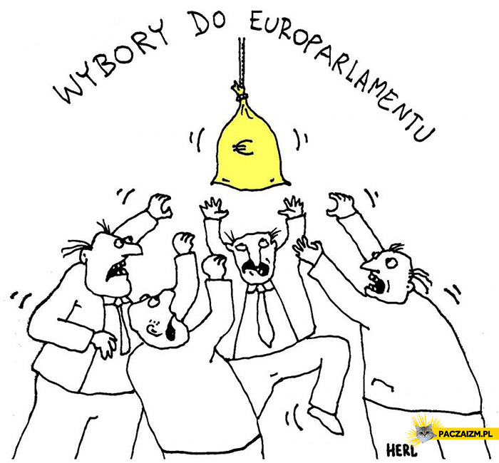 Wybory do europarlamentu