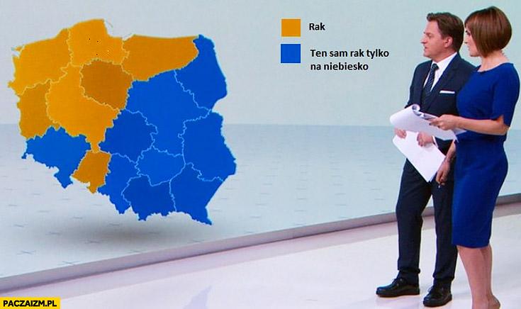 Wybory wyniki wyborów mapa polski grafika: rak, ten sam rak tylko na niebiesko
