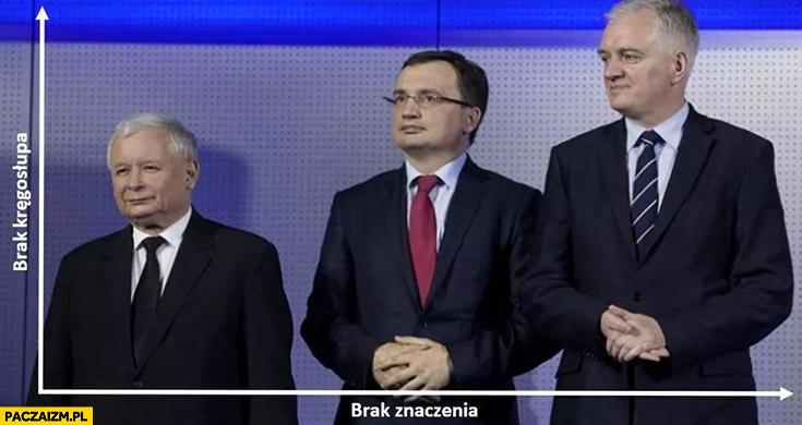 Wykres brak kręgosłupa, brak znaczenia Kaczyński, Ziobro, Gowin