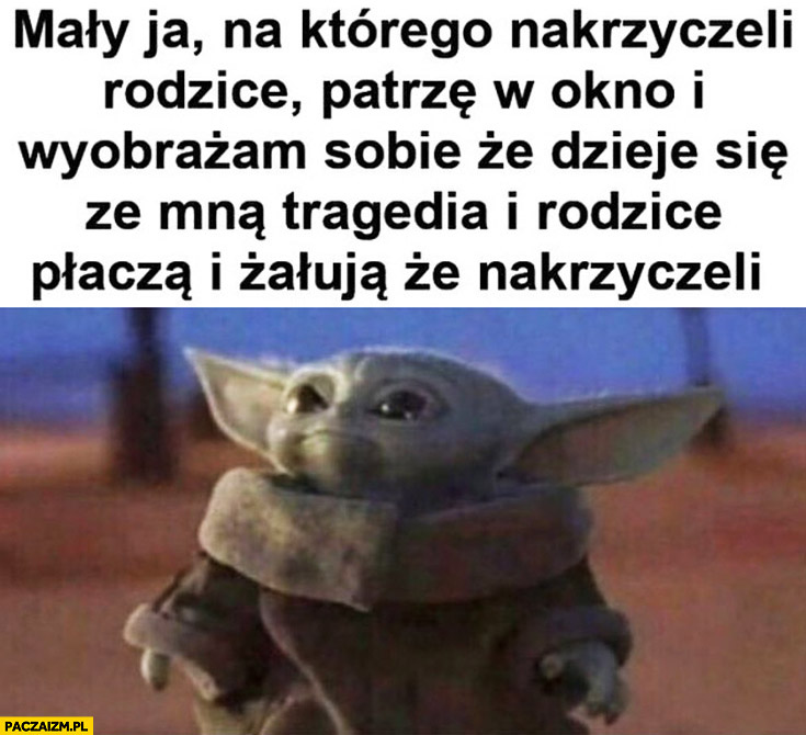 Yoda mały ja na którego nakrzyczeli rodzice wyobrażam sobie, że dzieje się ze mną tragedia i rodzice plączą i żałują, że nakrzyczeli
