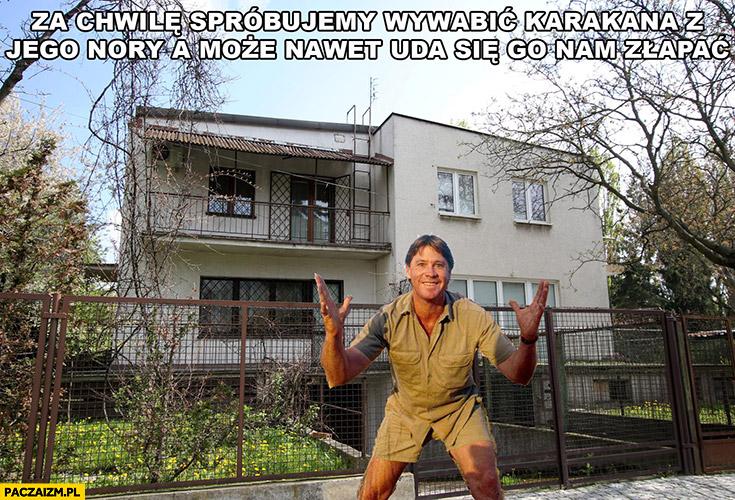 Za chwilę spróbujemy wywabić karakana z jego nory a może nawet uda się go nam złapać przed domem Kaczyńskiego Steve Irwin