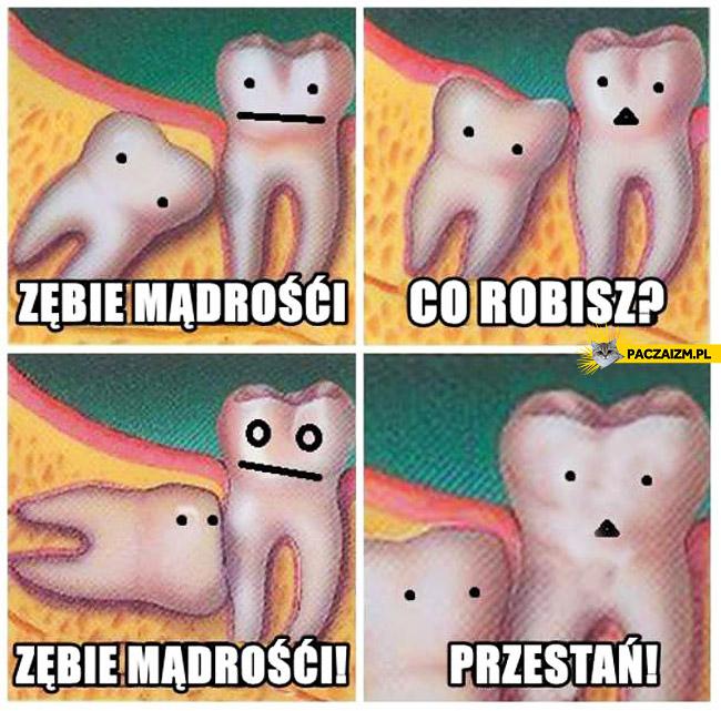Zębie mądrości przestań