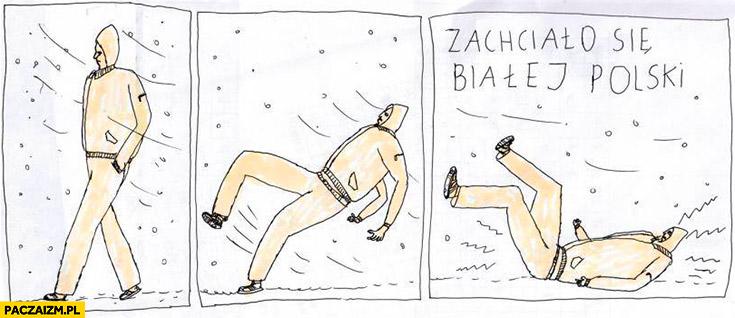Zachciało się białej polski wywala się na śniegu lodzie komiks Janek Koza