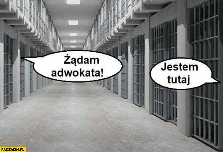 Żądam adwokata tutaj jestem cela w więzieniu