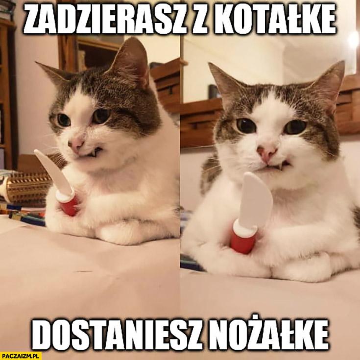 Zadzierasz z kotałke dostajesz nożałke kot kotek z nożem kosa