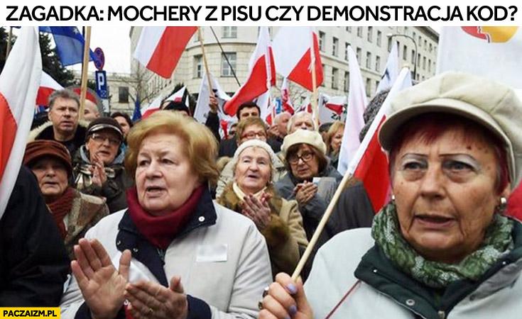 Zagadka: mochery z PiSu czy demonstracja KOD?