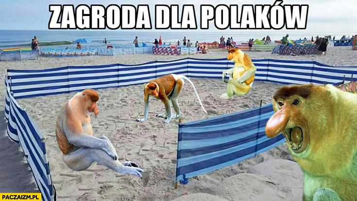 Zagroda dla Polaków parawan nosacze