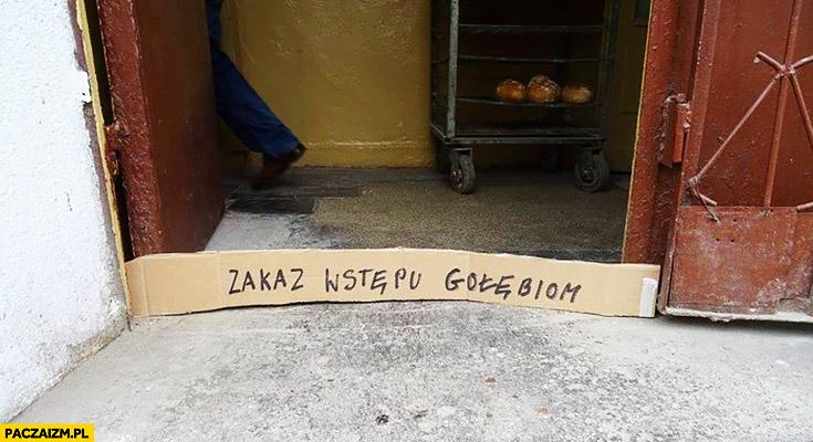 Zakaz wstępu gołębiom tekturka blokada napis na kartonie
