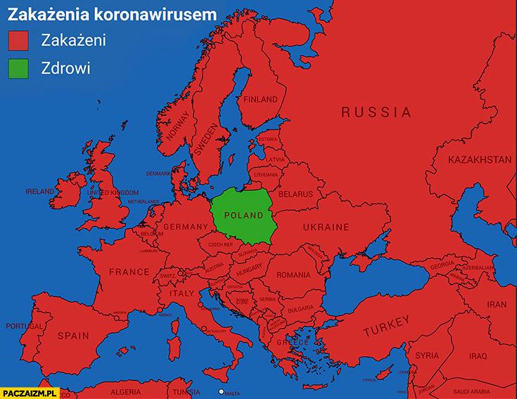 Zakażenia koronawirusem w całej Europie zakażeni w Polsce wszyscy zdrowi mapa mapka