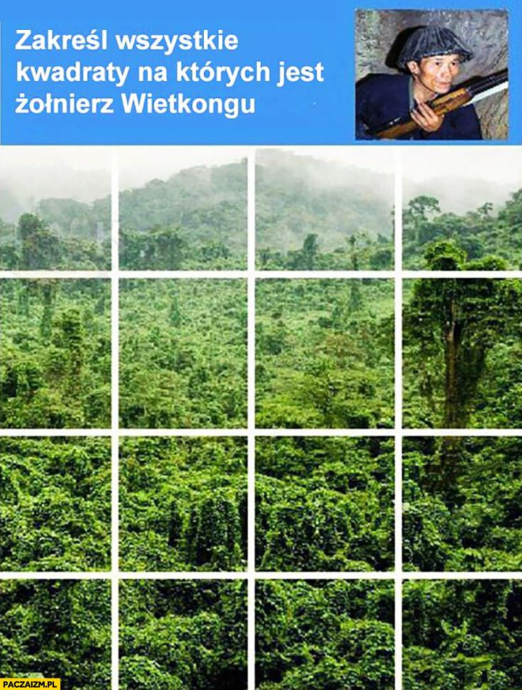 Zakreśl wszystkie kwadraty na których jest żołnierz Wietkongu captcha Google