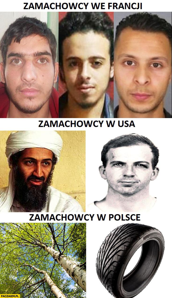 Zamachowcy we Francji, w USA, w Polsce brzoza opona porównanie