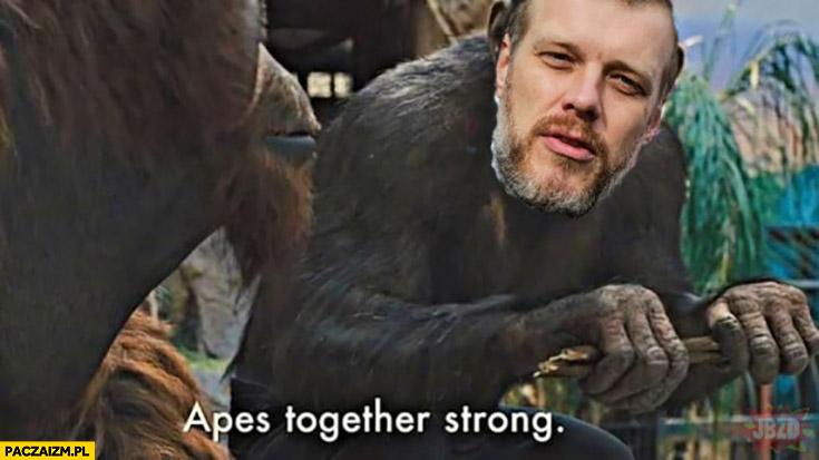 Zandberg małpy razem silne apes together strong