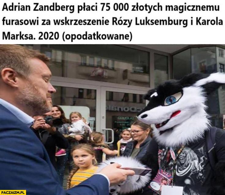 Zandberg płaci 75 tysięcy magicznemu furasowi za wskrzeszenie Karola Marksa, 2020 opodatkowane