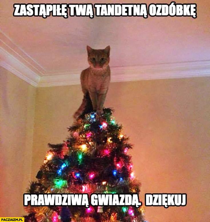 Zastąpiłem twą tandetna ozdóbkę prawdziwą gwiazdą, dziękuj kot na choince
