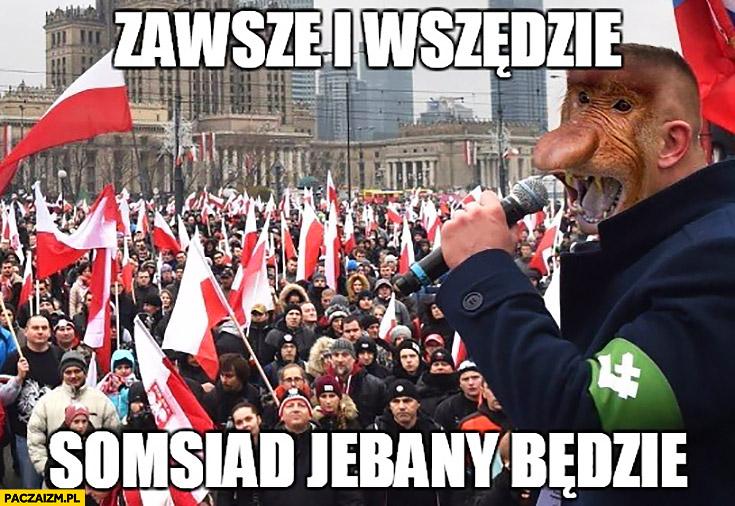 Zawsze i wszędzie sąsiad jechany będzie typowy Polak nosacz małpa Marsz Niepodległości ONR