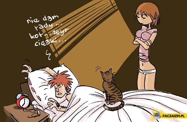 Zbyt ciężki kot
