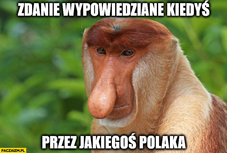 Zdanie wypowiedziane kiedyś przez jakiegoś polaka Typowy polak nosacz małpa
