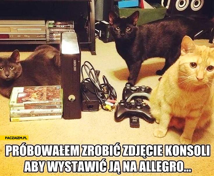 Zdjęcie konsoli na allegro z kotami