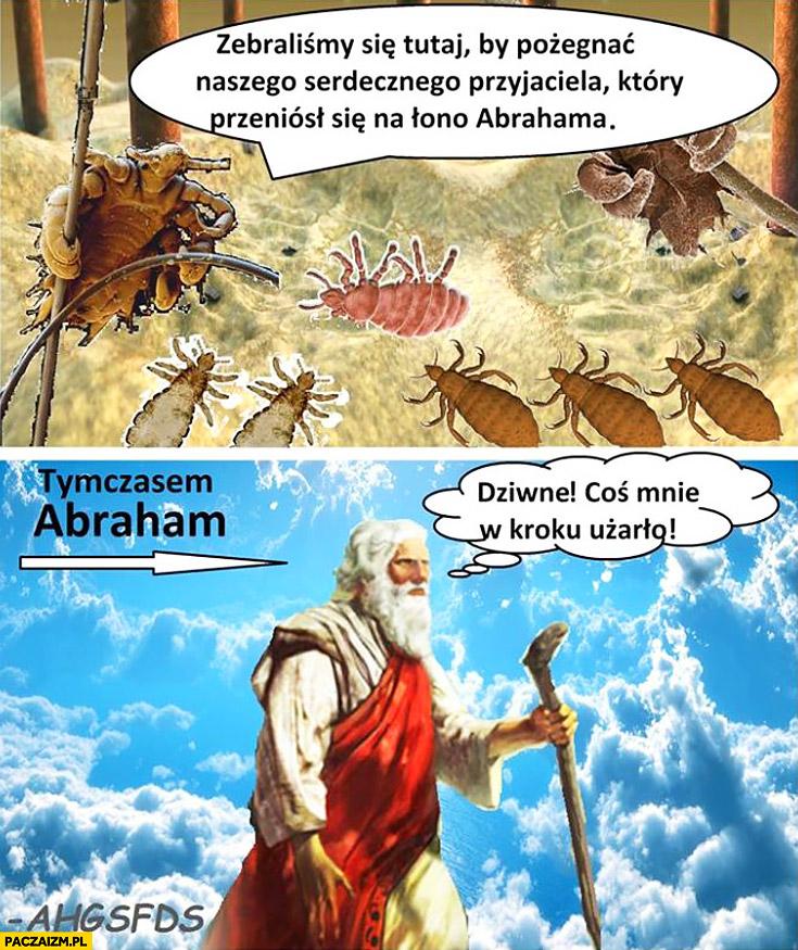 Zebraliśmy się tutaj by pożegnać naszego przyjaciela, który przeniósł się na łono Abrahama, tymczasem Abraham dziwne, coś mnie w kroku użarło żuk żuki
