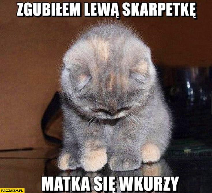 Zgubiłem lewą skarpetkę matka się wkurzy kot