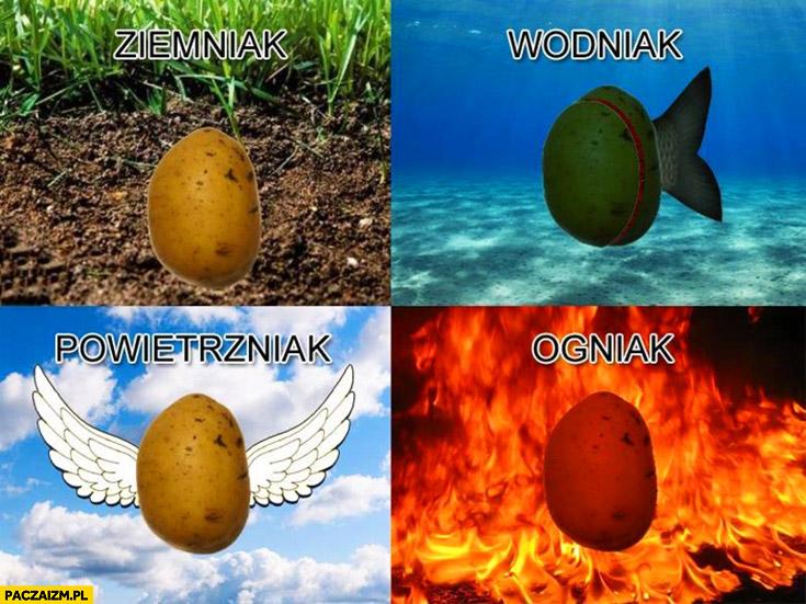 Ziemniak, wodniak, powietrzniak, ogniak