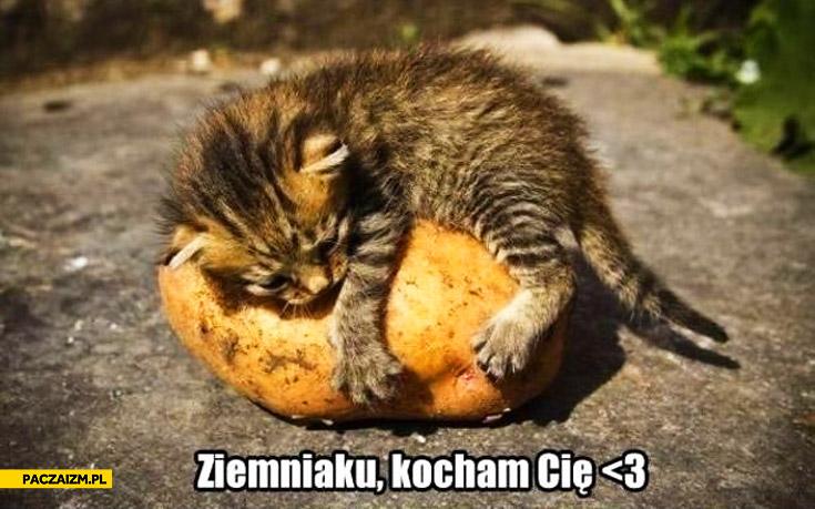 Ziemniaku kocham Cię