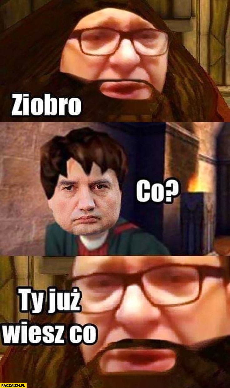 Ziobro co ty już wiesz co Stonoga Harry Potter