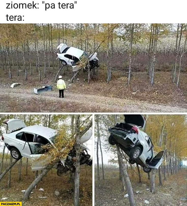 Ziomek pa tera auto na drzewie
