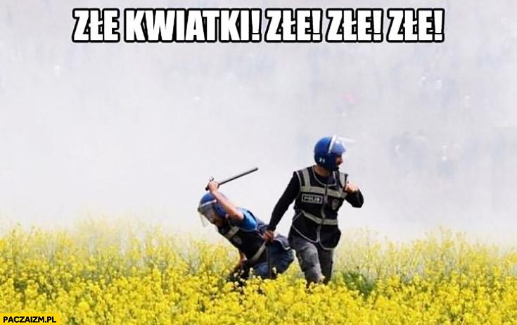 Złe kwiatki, złe, złe! Policjant bije pałuje kwiaty na łące