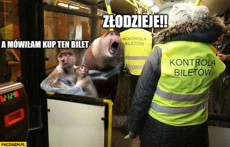 Złodzieje a mówiłam kup ten bilet kanary kontrola biletów a autobusie MPK typowy Polak nosacz małpa