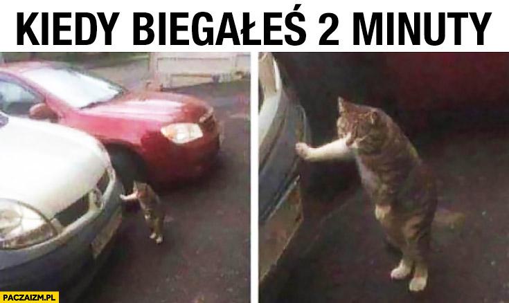 Zmęczony kot kiedy biegałeś 2 minuty opiera się o samochód
