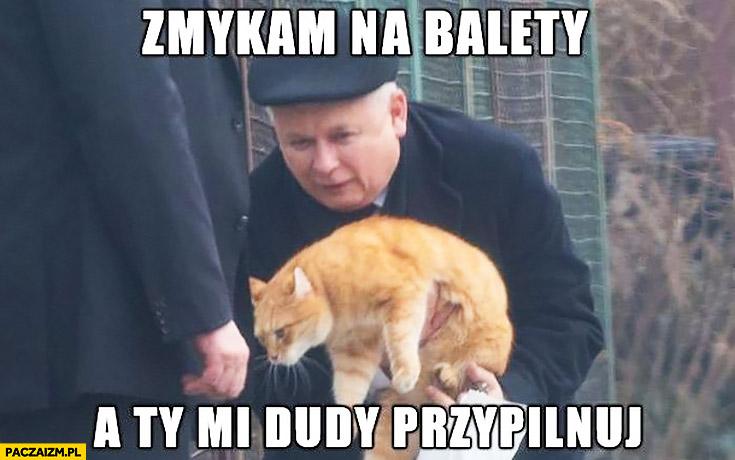 Zmykam na balety a Ty mi Dudy przypilnuj Kaczyński do kota