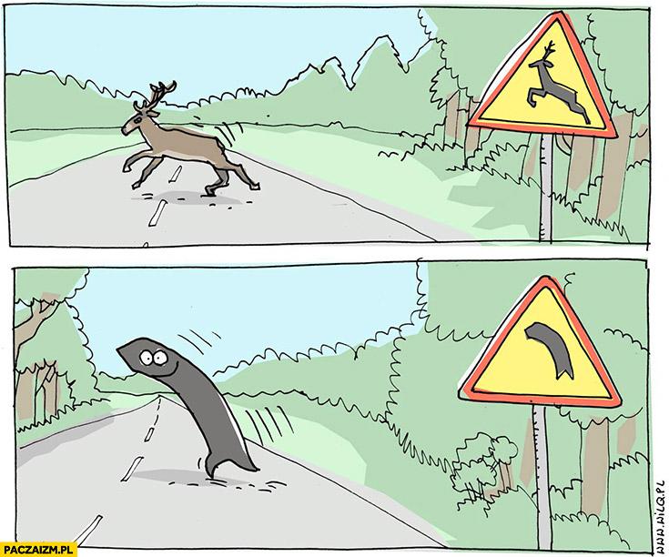Znak uwaga przebiegające zwierzęta, znak uwaga zakręt dosłownie Wilq
