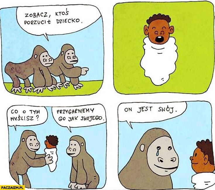 Zobacz ktoś podrzucił czarne dziecko małpy, przygarniemy go jak swojego, on jest swój