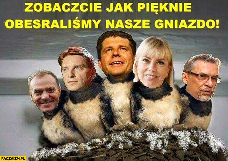 Zobaczcie jak pięknie obesraliśmy nasze gniazdko Tusk Lis Petru Bieńkowska Żakowski