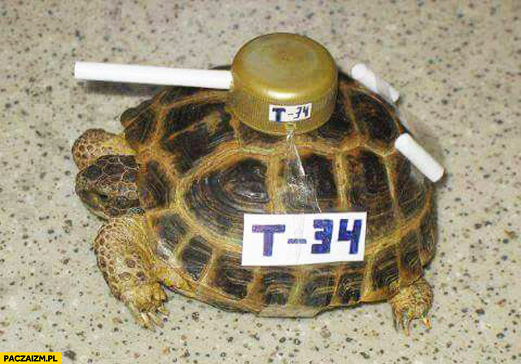 Żółw czołg T-34
