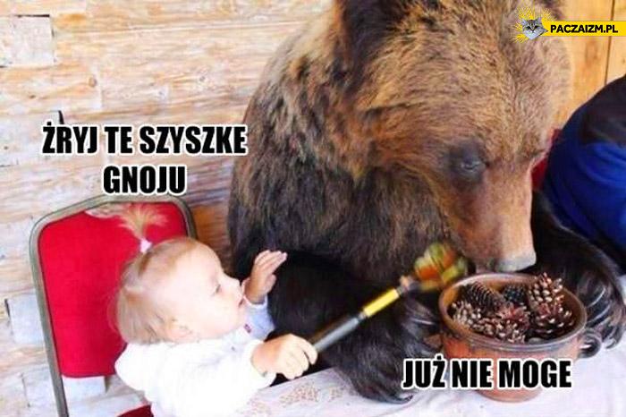Żryj te szyszkę gnoju już nie mogę niedźwiedź
