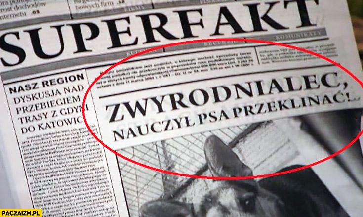 Zwyrodnialec nauczył psa przeklinać artykuł nagłówek w gazecie