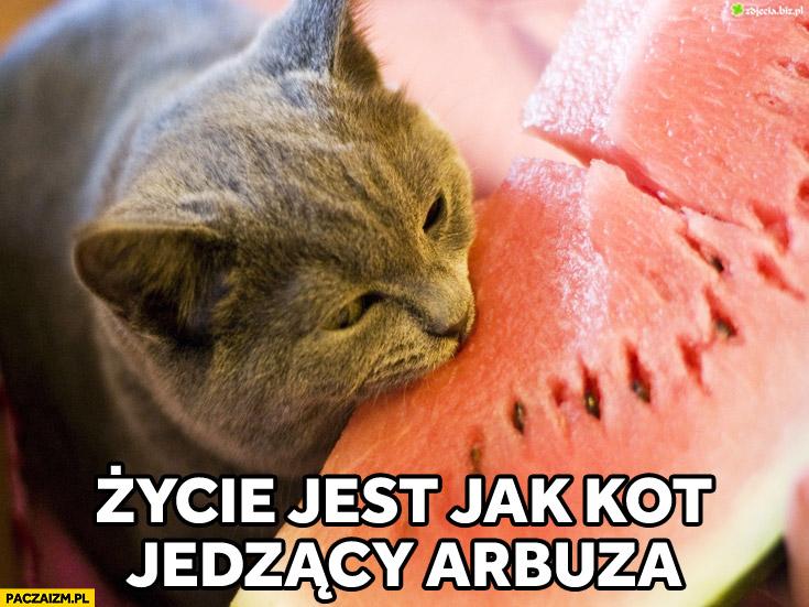 Życie jest jak kot jedzący arbuza